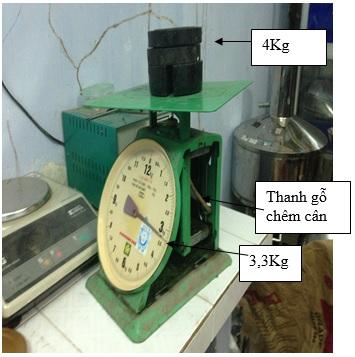 ĐLVN 30 : 2009 Quy trình kiểm định cân đồng hồ lò xo